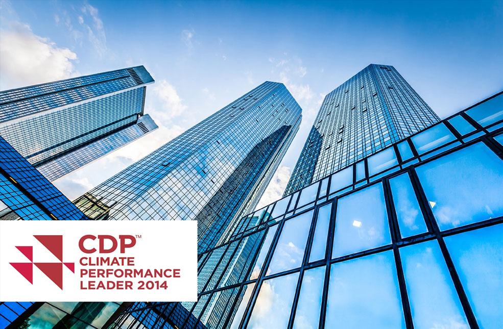 CDP 2014